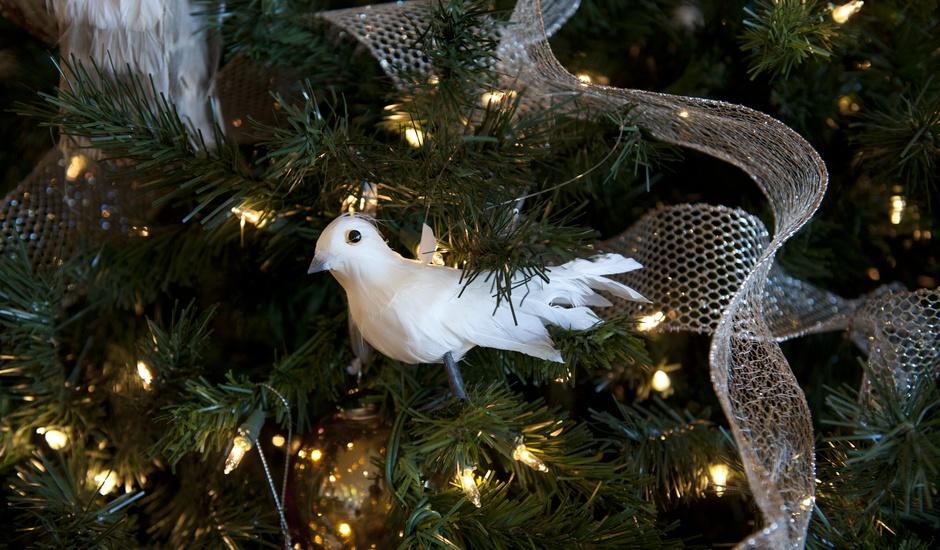 We love the Christmas holidays!
