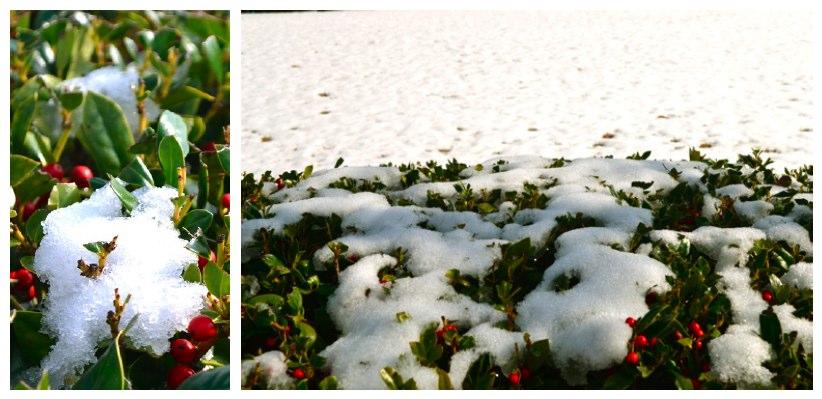Snow at SummerHouse!
